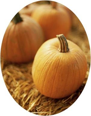 pumpkin round.jpg